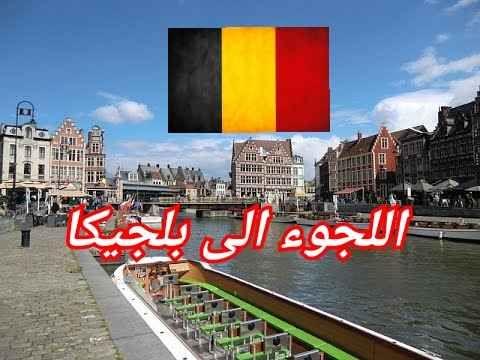 اللجوء في بلجيكا 2020 .. خطوات التقدم بطلب اللجوء في بلجيكا