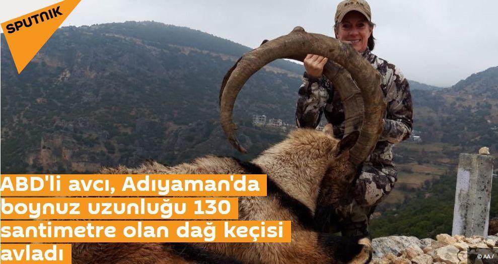 ABD'li avcı, Adıyaman'da boynuz uzunluğu 130 santimetre olan dağ keçisi avladı
