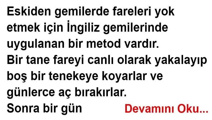 Yamyam Fare