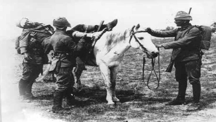 O YIL (1921) TIBBİYE HİÇ MEZUN VERMEDİ!