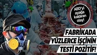 ABD'yi ayağa kaldıran olay! Domuz eti fabrikasında çalışan 370 kişide koronavirüs tespit edildi!