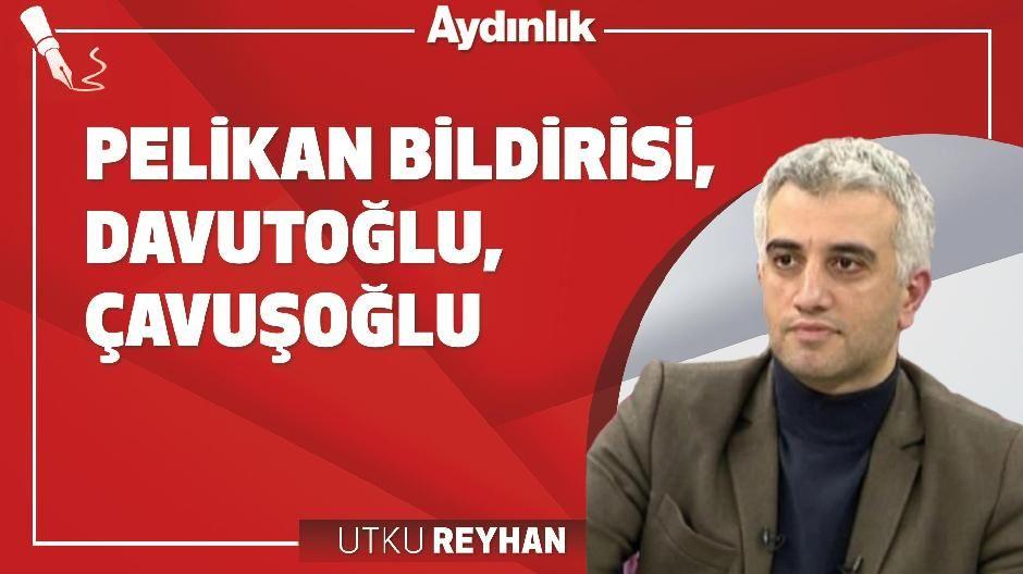 Pelikan Bildirisi, Davutoğlu, Çavuşoğlu