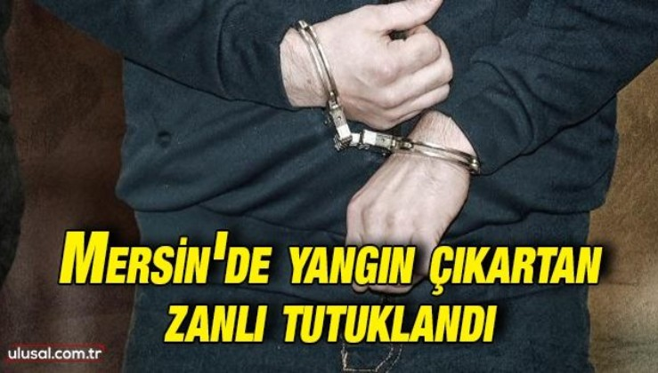 Mersin'de yangın çıkartan zanlı tutuklandı
