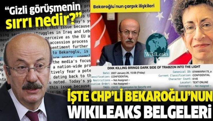 Y CHP'li Mehmet Bekaroğlu'nun Cıa Bağlantılı şahısla görüşmesi Wikileaks belgelerinde!