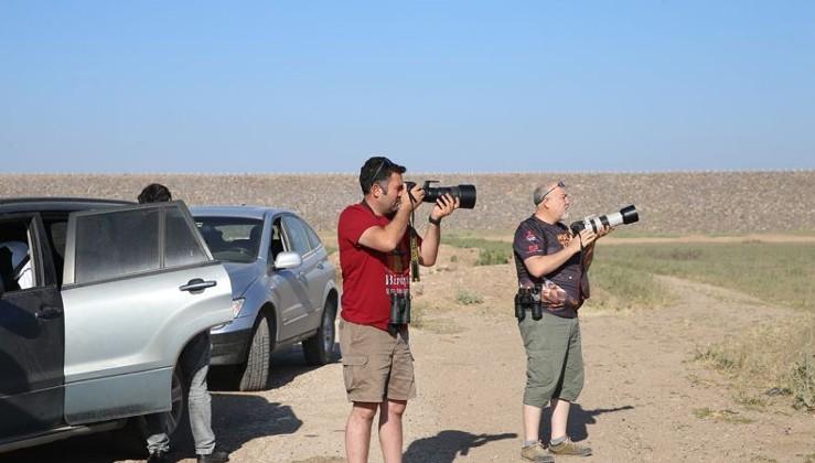 Reyhanlı Barajı'nda 194 kuş türü gözlemlendi