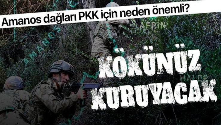 Teröristlerden temizlenen Amanos Dağları'nın PKK terör örgütü için önemi nedir?