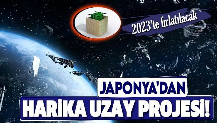 """Japonya, uzay çöplüğüne karşı """"ahşap uydu projesi"""" başlattı: Üretilecek ahşap uydu, 2023'te uzaya fırlatılacak"""