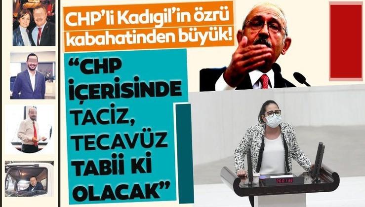 CHP'li Kadıgil'in özrü kabahatinden büyük: CHP içinde taciz, tecavüz tabii ki olacak