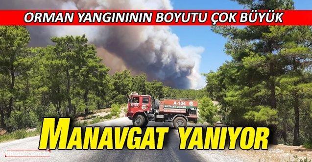 Manavgat'ta büyük yangın