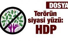 Terörün siyasi yüzü: HDP