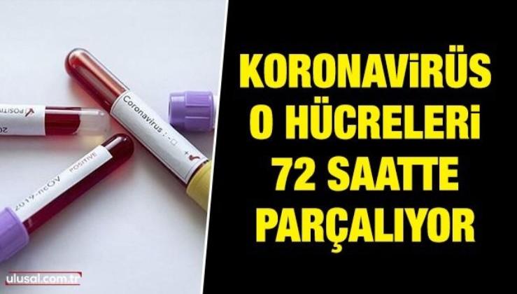Koronavirüs o hücreleri 72 saatte parçalıyor