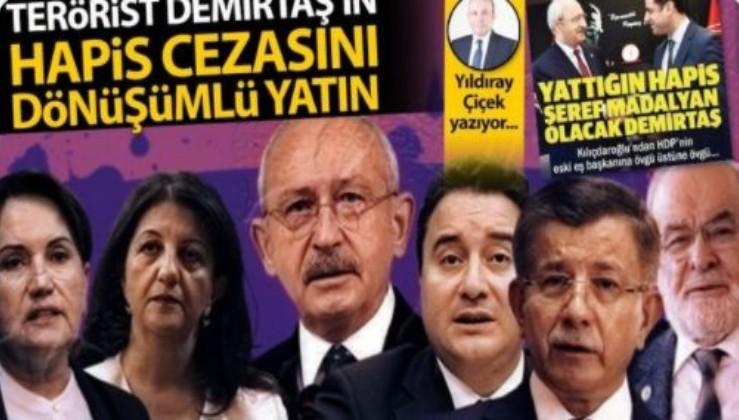 Terörist Demirtaş'ın hapis cezasını dönüşümlü yatın