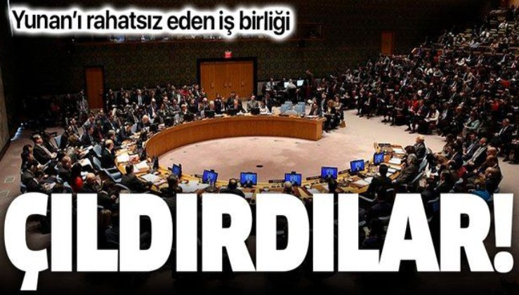 SON DAKİKA: BM'de Finlandiya-Türkiye iş birliği Yunanistan'ı rahatsız etti