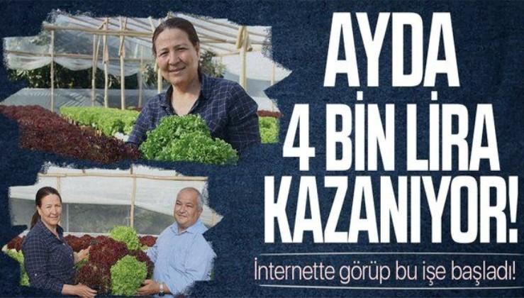 Mersin'de bir ev kadını internette görüp bu işe başladı! Ayda 4 bin lira kazanıyor
