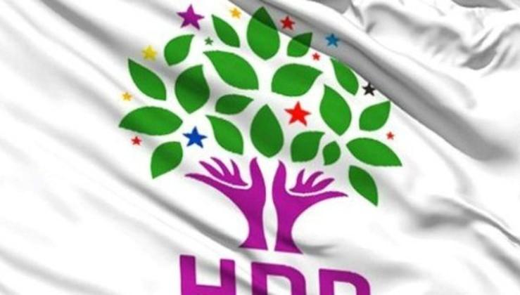HDP'li Lice Belediye Başkanı gözaltına alındı.