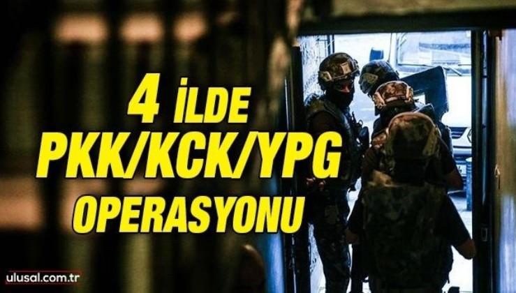 4 ilde PKK/KCK/YPG operasyonu