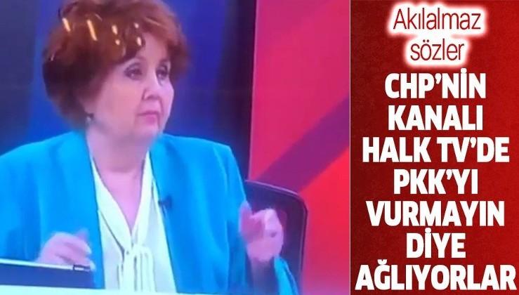 Halk TV sunucusu Ayşenur Arslan'ın Pençe-Kaplan Operasyonu hazımsızlığı: