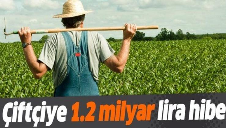 Tarımda girişimciye 1.2 milyar TL hibe