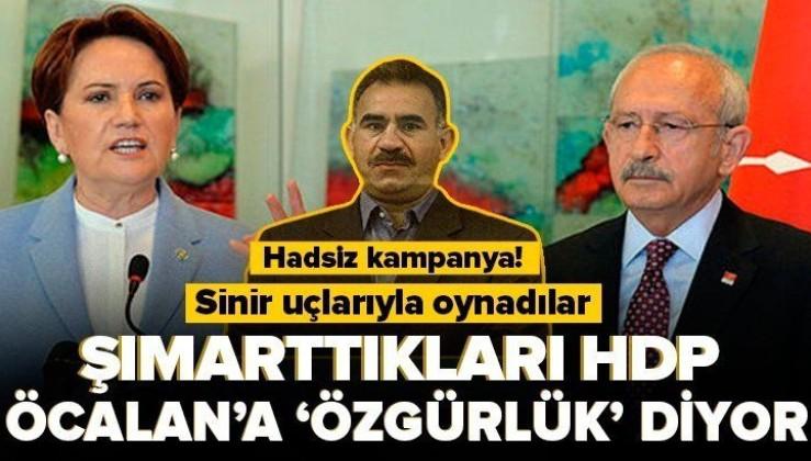PKK elebaşı Abdullah Öcalan için özgürlük istediler!