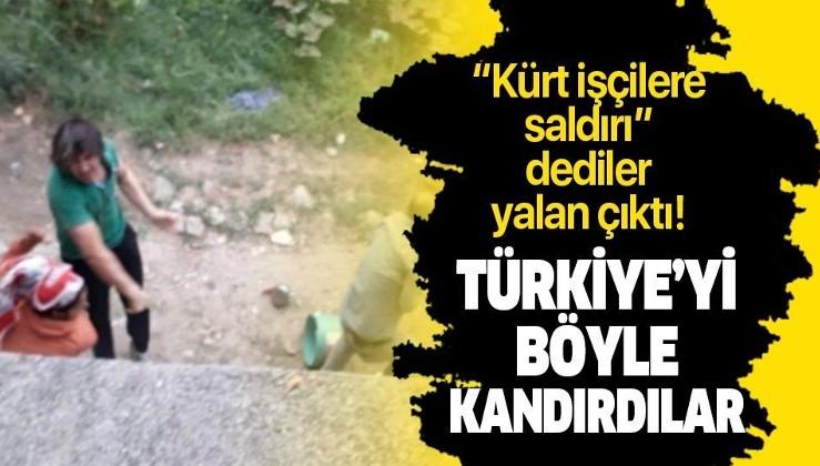 Sakarya'daki fındık kavgasının gerçek sebebi ortaya çıktı! Türkiye'yi böyle aldattılar...