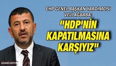 """CHP Genel Başkan Yardımcısı Veli Ağbaba: """"HDP'nin kapatılmasına karşıyız"""""""