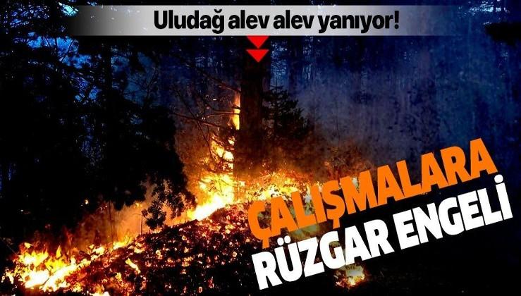 Uludağ'da orman yangını!.