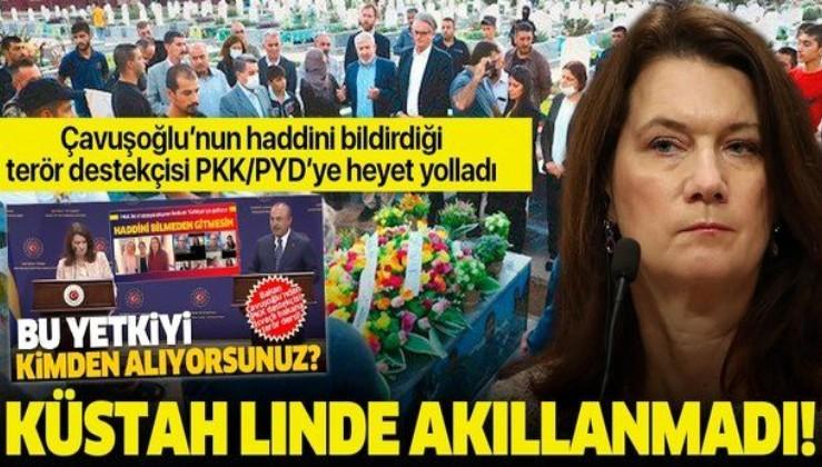 Terör destekçisi İsveç Dışişleri Bakanı Ann Linde ayağının tozuyla eli kanlı PKK'ya heyet yolladı