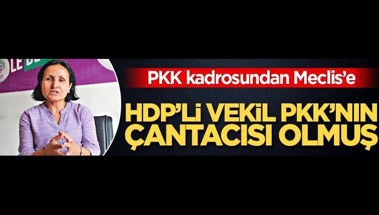 HDP'li vekil PKK'nın çantacısı olmuş