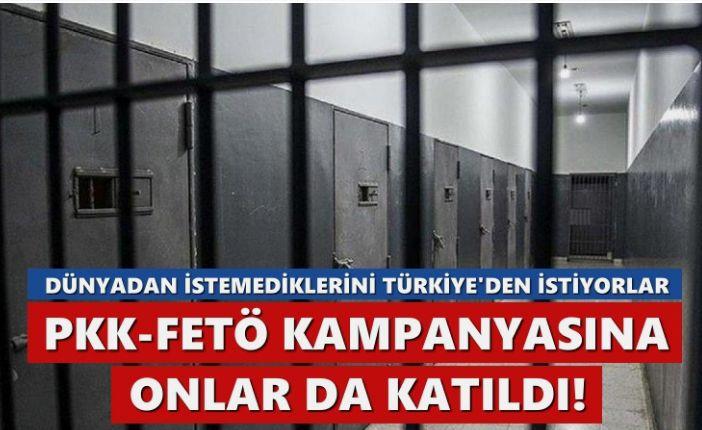 PKK-FETÖ kampanyasına onlar da katıldı… Dünyadan istemediklerini Türkiye'den istiyorlar!