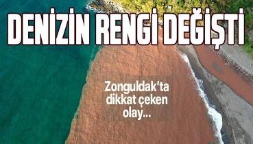 Zonguldak'ta dikkat çeken olay... Denizin rengi değişti