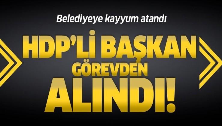 Son dakika: HDP'li Cizre İlçe Belediye Başkanı Mehmet Zırığ görevden alındı, belediyeye kayyum atandı.