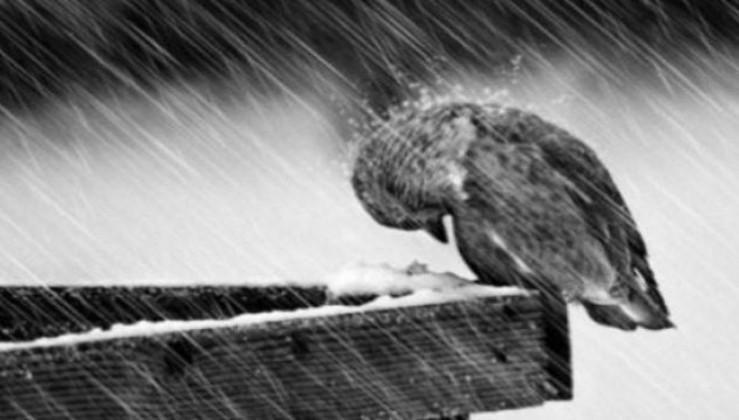 """""""Сховали пуховики і шапки? В Україну йдуть сильні дощі з мокрим снігом!"""" - Синоптик вказала регіони (відео)"""