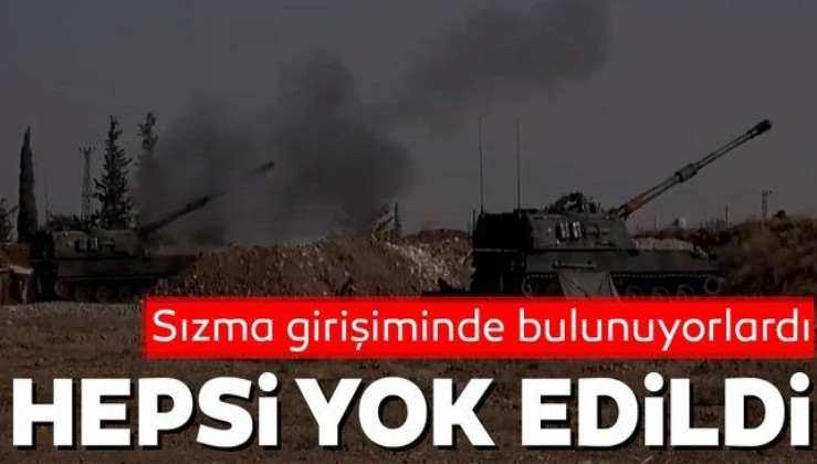Barış Pınarı bölgesinde sızma girişiminde bulunan 7 PKK'lı etkisiz hale getirildi
