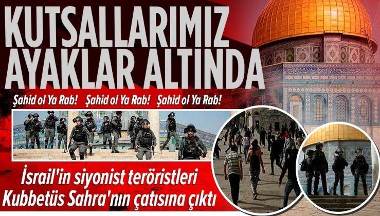 Son dakika: İsrail'in siyonist teröristleri kanlı ayaklarıyla Kıble Mescidi ile Kubbetüs Sahra'nın çatısına çıktı!