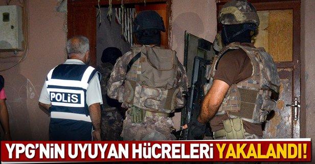 YPG'nin uyuyan hücreleri yakalandı