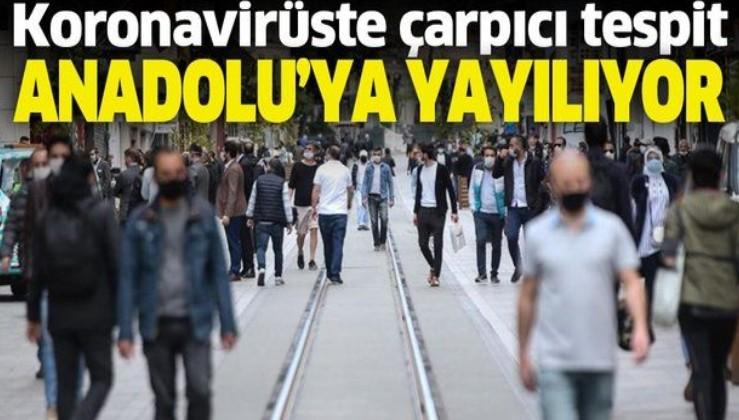 Koronavirüste çarpıcı tespit! Anadolu'ya yayıldı