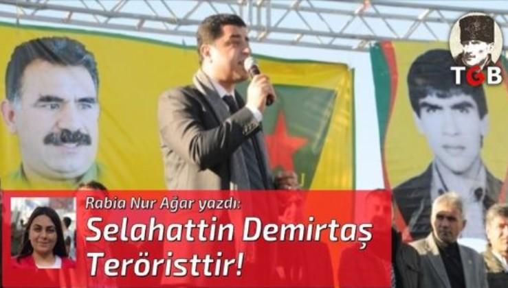 Selahattin Demirtaş Teröristtir!