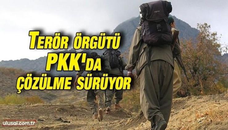 Terör örgütü PKK'da çözülme sürüyor