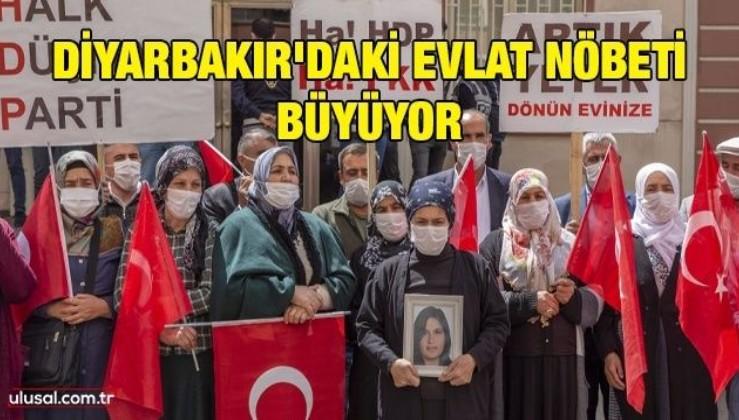 Diyarbakır'daki evlat nöbeti büyüyor