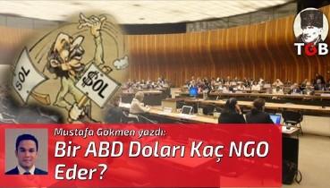 Bir ABD Doları Kaç NGO Eder?