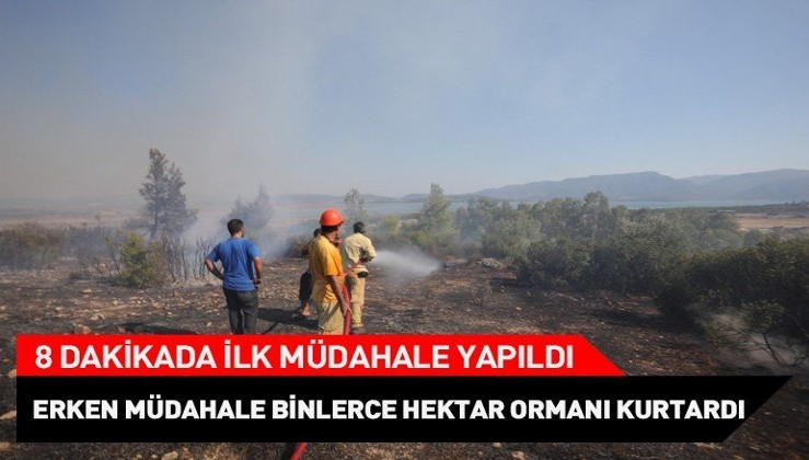İzmir'de erken müdahale binlerce hektar ormanı kurtardı