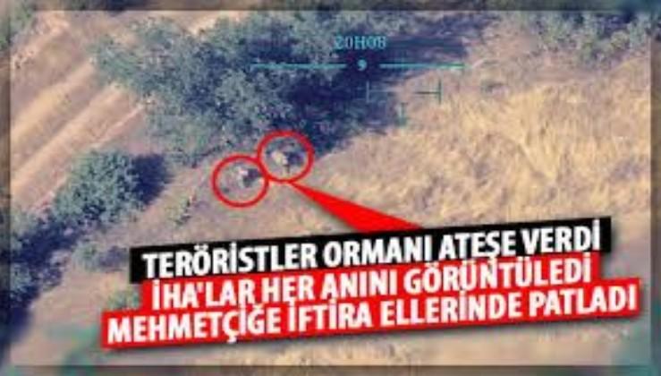 PKK'lı teröristler ormanları ateşe verirken İHA'larca böyle görüntülendi