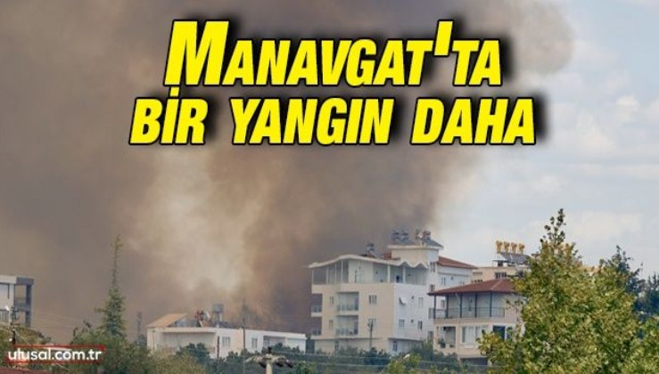 Antalya Manavgat'ta orman yangını çıktı