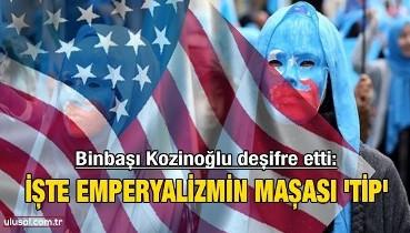 Binbaşı Kozinoğlu deşifre etti: İşte emperyalizmin maşası 'TİP'