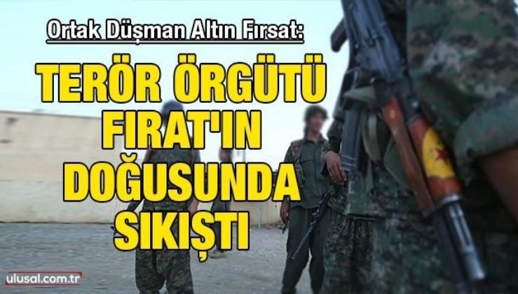 Ortak Düşman Altın Fırsat: Terör örgütü Fırat'ın doğusunda sıkıştı
