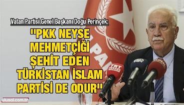 Doğu Perinçek: ''PKK neyse Mehmetçiği şehit eden Türkistan İslam Partisi de odur''