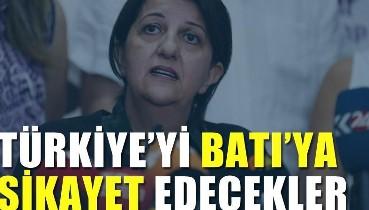 HDP Türkiye'yi Batı'ya şikayet edecek