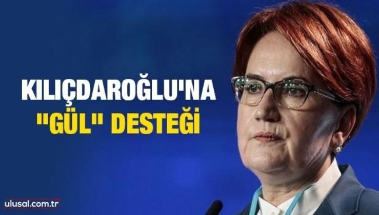 """Kılıçdaroğlu'na """"Gül"""" desteği"""