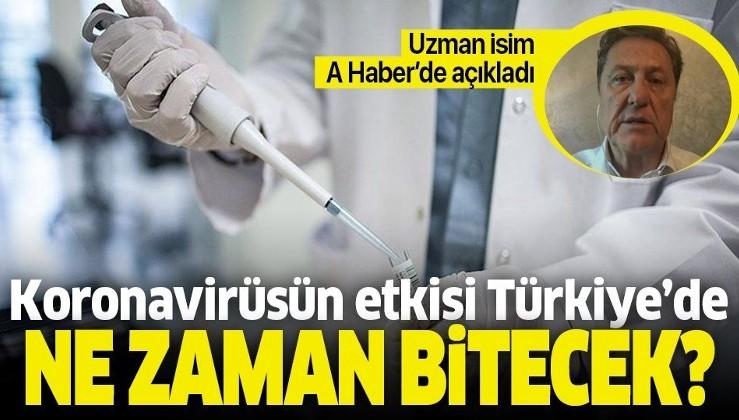 Türkiye'de koronavirüs etkisi ne zaman bitecek? Uzman isim canlı yayında açıkladı