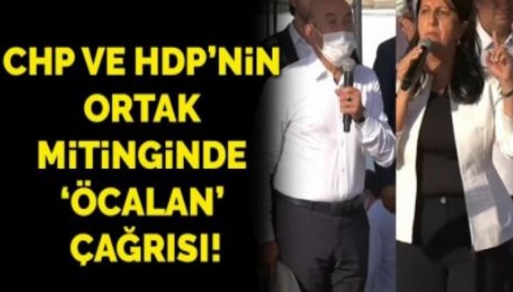 """HDP ve CHP'den ortak miting ÖCALAN için """"TECRİDİ KALDIRIN"""" çağrısı"""